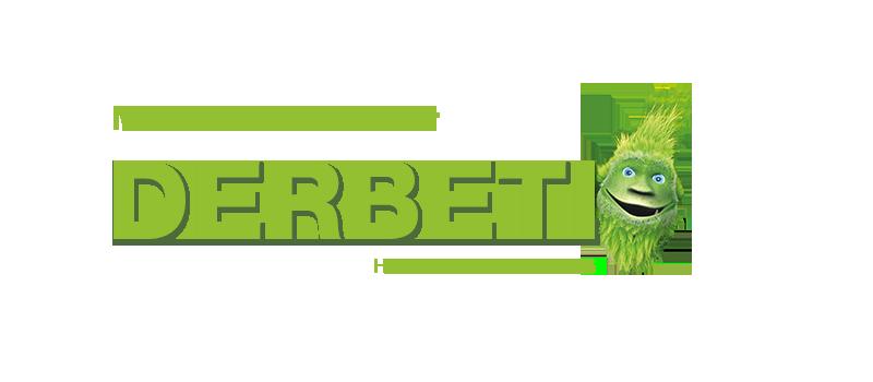 DerBeti – Massive Holzhäuser